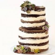 Vegan Treats, Cakes Foto