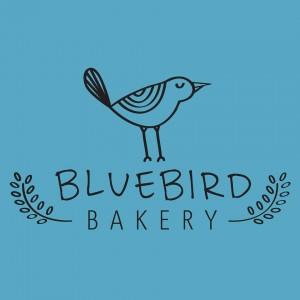 Pluma by Bluebird